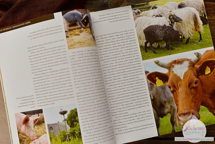 """Recenzja książki: """"Księga mięsa"""""""